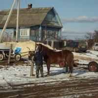 на окрайне города :: Сергей Кочнев