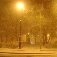 Снегопад :: ДС 13 Митя
