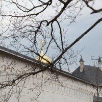 Савва-Сторожевский монастырь 4 :: Александр Беляков