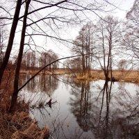 Весной на речке :: Андрей Зайцев
