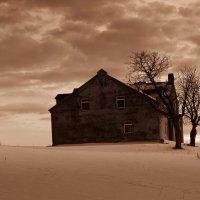 Заброшенный дом :: Михаил Онипенко