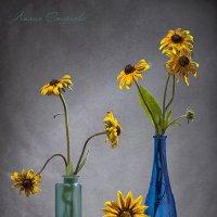 Цветочный садик на столе... :: Лилия *