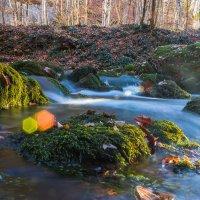 Осень в Крыму :: Sergey Bagach