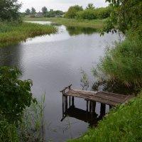 Деревенский пруд :: Татьяна