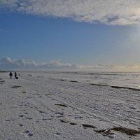 очень Белое море... :: Елена Третьякова