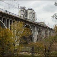 мост через царицу :: Сергей Андриянов