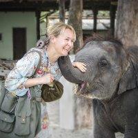 Дай хобот, слон, на дружбу мне! :: Алексей Окунеев