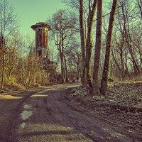 Башня а Мартышкино :: Сергей Базылев