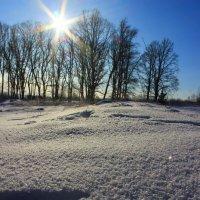 Зимнии блики мороза :: Надежда Алексеенко