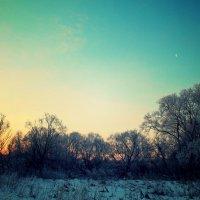Зимнее утро :: Егор Колесников