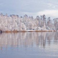 Зимнее утро2 :: WASS LV