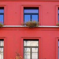 Про красный дом :: Эдуард Цветков