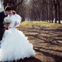 свадебное :: Irina Evushkina