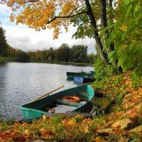 Осень в парке :: Александр Яковлев