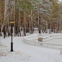 По свежему снегу :: Kogint Анатолий