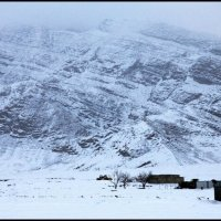 Зима. :: Ахмед Овезмухаммедов
