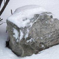 Камень у дома Анны Ахматовой :: Лариса *