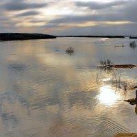 Весенний разлив на Оке. :: Тамара Бучарская