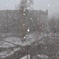 снег :: валерия