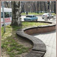 Змейка-скамейка :: Юрий Муханов