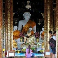 Таиланд, Чанг-Май, поклонение Будде :: Владимир Шибинский