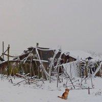ВЕРНЫЙ СТРАЖ, повтор :: Виктор Осипчук