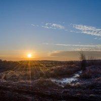 Утро в деревне :: Андрей Афанасьев