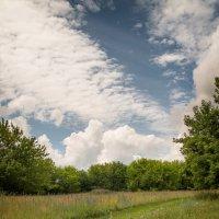 перистость облаков :: Андрей ЕВСЕЕВ