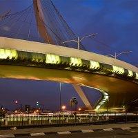 Подвесной мост :: Юрий Эпштейн