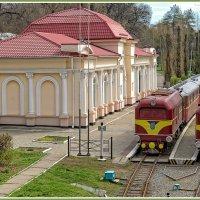 Детская железная дорога :: Юрий Муханов