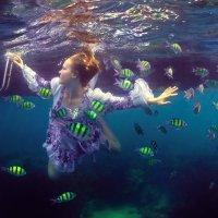 Swim with the fishes. :: Дмитрий Лаудин