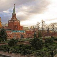 Александровский сад :: Оленька Соломатова