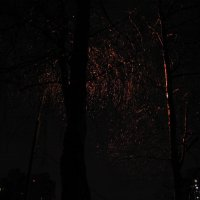 Город и Ночь. :: Владимир  Зотов