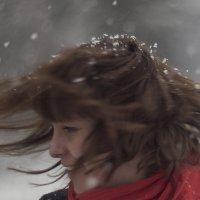 весеннее настроение :: Светлана Митина