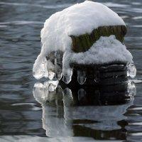Зимние наряды :: Александр Сысоев