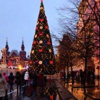 Новый год :: Олеся Семенова