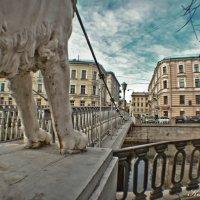 львиный мостик :: Екатерина Яковлева