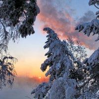 Утро красит нежным светом... :: Галина