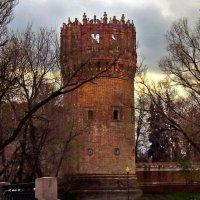 Сетуньская башня :: Наталья Лакомова