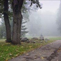 Утро туманное :: Любовь Потеряхина