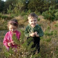 славно в лесу :: Oksana