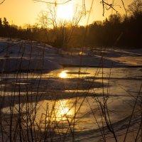 Рассвет в воде :: Светлана Шмелева