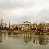 пруд в Ботаническом саду (Москва) :: елена брюханова