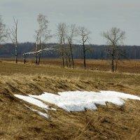 Последний снежок :: Валерий Талашов