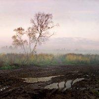 Ранняя дорога :: Валерий Талашов