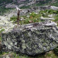 Повелитель камней :: Сергей Карцев
