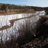 Русло речушки весной :: Павел Гусев