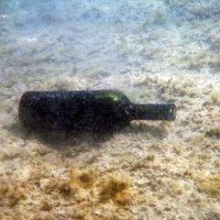 Бутылка с вином на морском дне. :: Александр Малышев