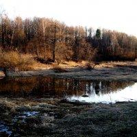 Когда-то была река... :: Юлия Шуралева