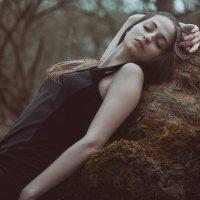 Сумерки :: Оксана Погребная